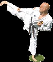 Karate Body Fit